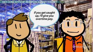 reinforcement theory in the workplace definition u0026 examples
