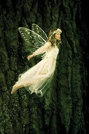 the meaning and symbolism of the word fairy
