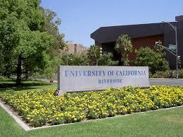 Touro University Worldwide Best Psychology Colleges In California Universities Com