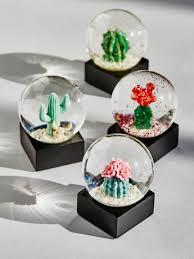 mini cactus snow globes holidays pinterest mini cactus