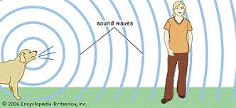 traveling sound activity teachengineering org