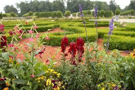 better homes and gardens wallpaper border zandalus net