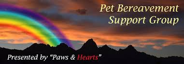 pet bereavement paws hearts pet bereavement support