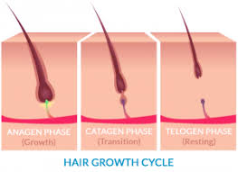 new hair growth discoveries alopecia treatment update on jak inhibitors ruxolitinib and