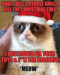 Cat Christmas Memes - grumpy cat meme jingle bells people smell kill the christmas