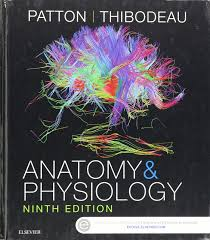 anatomy and physiology patton 9780323341394 amazon com books