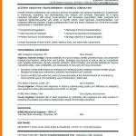 resume career objective meaning in hindi elegant blue how to