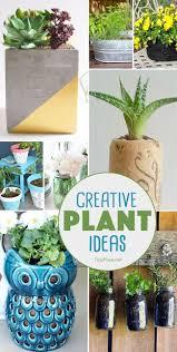 9 creative plant ideas creative ideas and planters