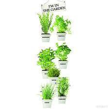 herbe cuisine herbes aromatiques en cuisine with herbes aromatiques en cuisine