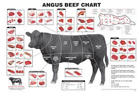 what everybody ought to know about beef cuts clover meadows beef