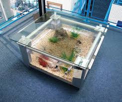 Aquarium Coffee Table Coffe Table Engaging Aquarium Coffee Table Coffee Table Fish