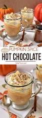 best 25 pumpkin drinks ideas on pinterest pumpkin spice tea