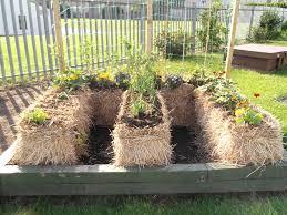 kitchen gardening ideas vegetable garden ideas for small spaces