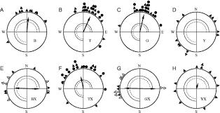 Monochromatic Light Light Dependent Magnetoreception In Birds The Behaviour Of