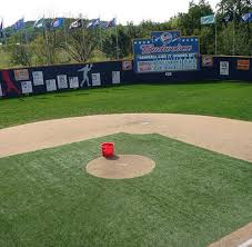 Backyard Baseball 10 Best 25 Backyard Baseball Ideas On Pinterest Play Baseball