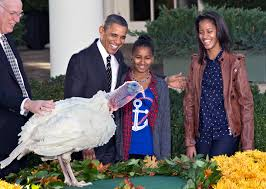 the one with all the thanksgivings just like ours presidential thanksgivings don u0027t always go as
