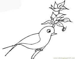 coloring pages parrot birds parrots free printable page 702631