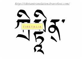 21 best tibetalia tibetan script tattoo design samples images on