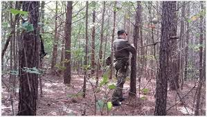 How To Build Hunting Blind Deer Hunting Blinds Summer Hunting