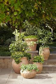 Garden Containers Large - planters amusing large terracotta pots large terracotta urns