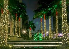 hoa services naples christmas lights