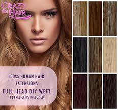 xtras hair extensions 18 premium diy weft 100 remy human hair extensions ebay