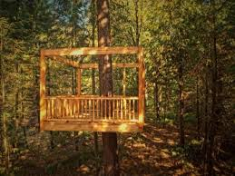 best 25 treehouse builders ideas on pinterest beautiful tree