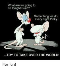 Pinky And The Brain Meme - what are we going to do tonight brain same thing we do every