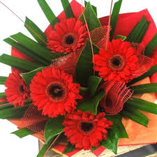 gerbera bouquet gerbera flowers bouquet flower delivery wellington nz