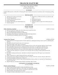 Customer Service Resume Summary Examples Sample Resume Medical Nurse Resume Template Leasing Consultant