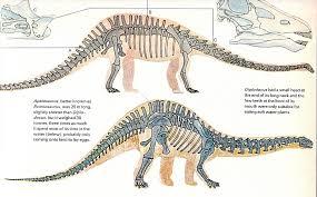 love chasmosaurs vintage dinosaur art