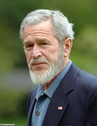 hair cuts for a 70 year old man the 25 best grey beards ideas on pinterest thick beard long