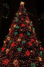 75 best phenomenal christmas trees images on pinterest christmas
