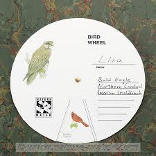 bird wheel activity kit bird identification craft