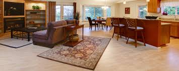 Area Rug Cleaning Ct Rug Cleaning Durham Raleigh Nc Progreen Carpet