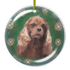 ruby cavalier king charles spaniel ornaments keepsake ornaments