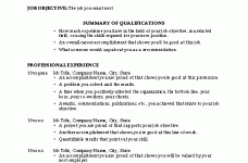 modern decoration example of a professional resume capricious