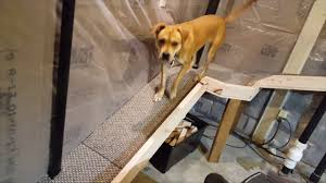 Patio Panel Pet Door by How To Make A Pet Door Out Of A Basement Window Including Go Pro