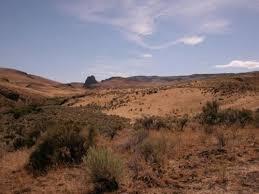 oregon valley ebipm