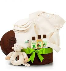 organic food gift baskets 12 best organic baby gift baskets images on organic
