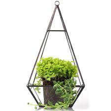 succulent planters for sale triangle pyramid geometric glass terrarium box succulent fern moss