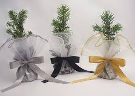 memorial service favors the greenworld project live evergreen tree seedling favors and gifts