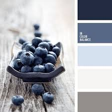 Bathroom Color Palette Ideas Colors Best 25 Color Schemes Ideas On Pinterest Color Pallets