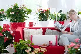 Wohnzimmer Schwarz Weis Grun Gemütliche Innenarchitektur Gemütliches Zuhause Wohnzimmer Rot