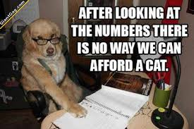 Dog With Glasses Meme - we can t afford a cat giantgag