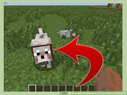 Minecraft How To Make A Bed How To Build A Wolf Den For Your Wolf On Minecraft 10 Steps
