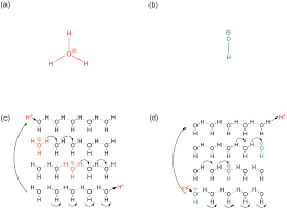 grotthuss mechanisms from proton transport in proton wires to