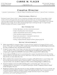 Opening Resume Statement Examples by Download Objectives For Marketing Resume Haadyaooverbayresort Com