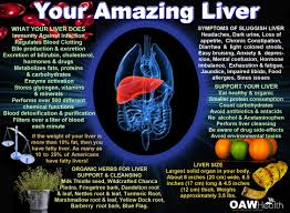 to get rid of fatty liver disease