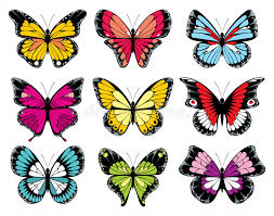 9 colorful butterfly icons stock vector illustration of bright